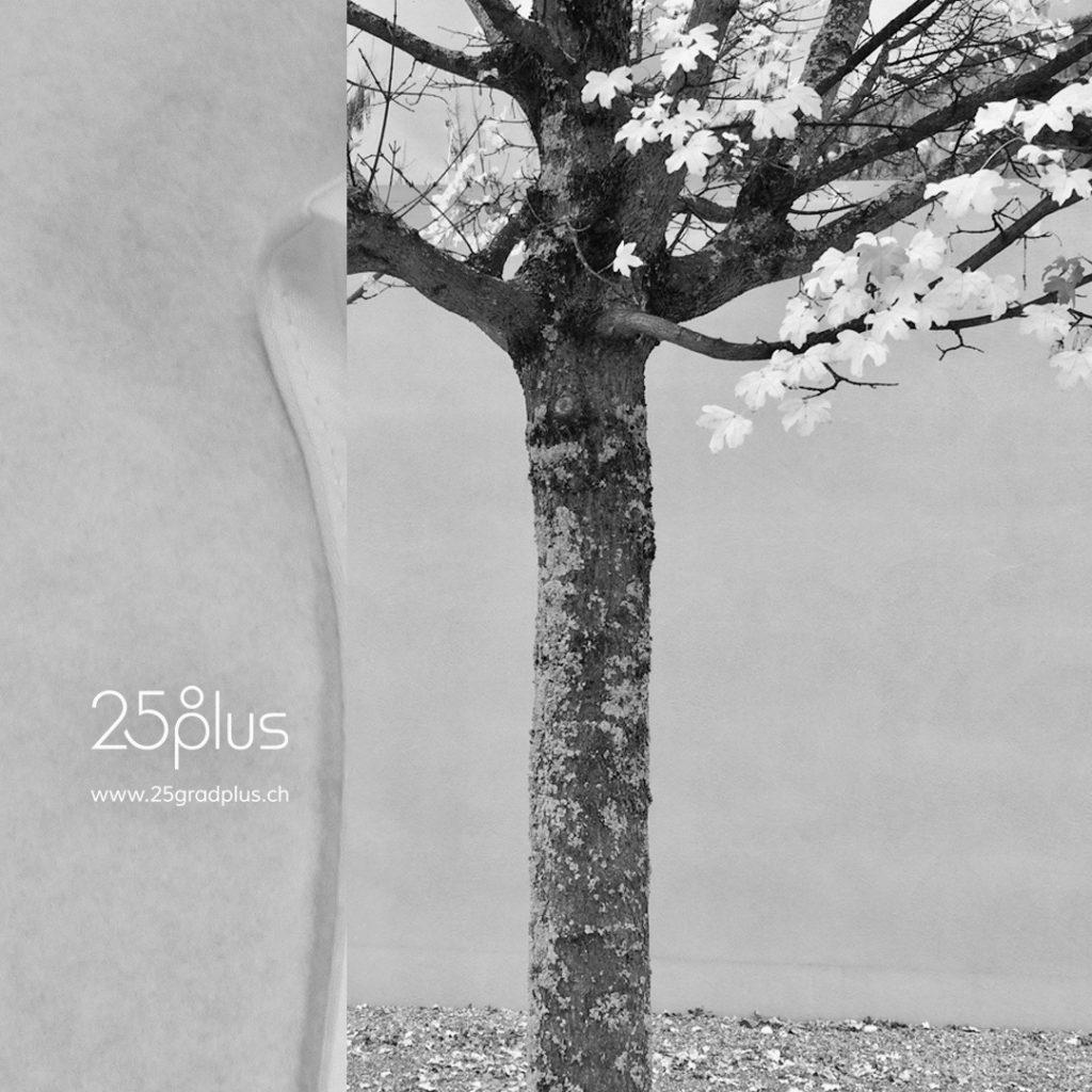 Designermode für den Sommer von und bei 25gradplus, Zürich