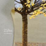 25° plus Zürich | Marian Good | hier erfährst du mehr über uns